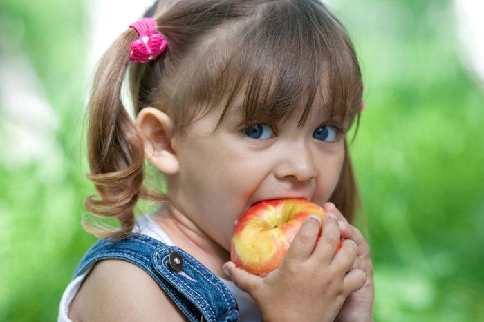 La importancia de la fibra en una dieta equilibrada y saludable