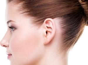 earfold orejas de soplillo