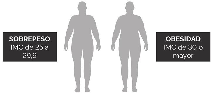 Sobrepeso y obesidad 2